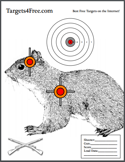 Dynamic image intended for printable squirrel target